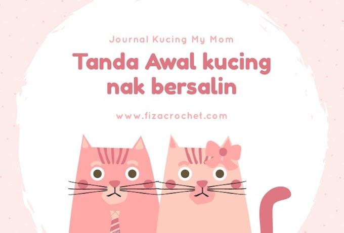Tanda-Tanda Awal Kucing Nak Bersalin