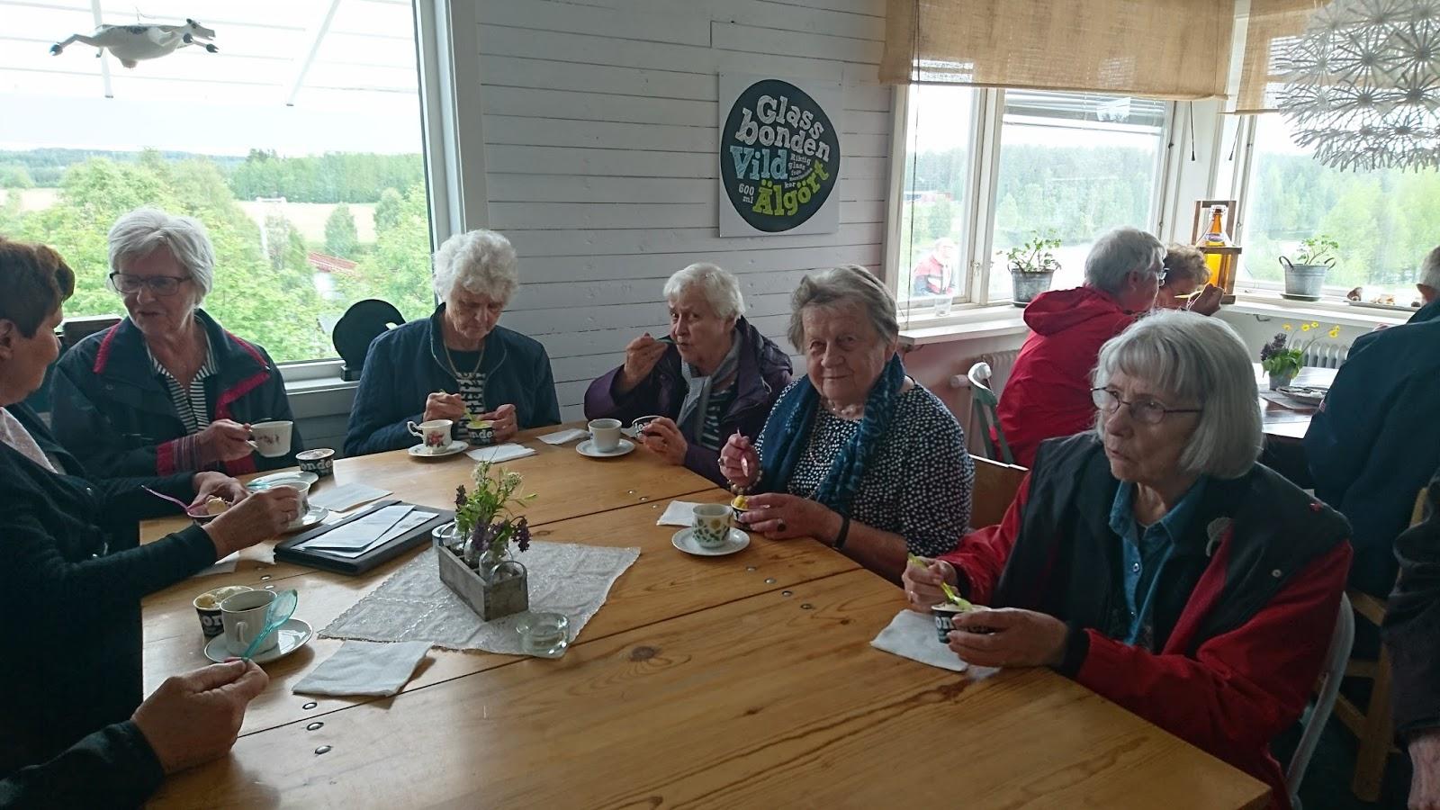 Afasiföreningen i Örnsköldsvik: juni 2016
