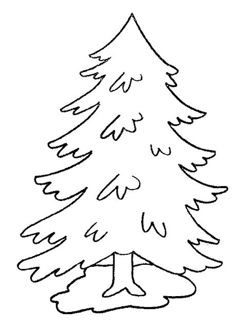 Gambar Mewarnai Pohon Cemara - 9