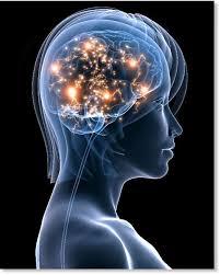 LA EPILEPSIA ES LA SEGUNDA ENFERMEDAD CRÓNICA NEUROLÓGICA MÁS COMÚN EN EL MUNDO, Y CUALQUIERA PUEDE DESARROLLARLA