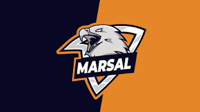 Mentahan Logo Esports Eagle