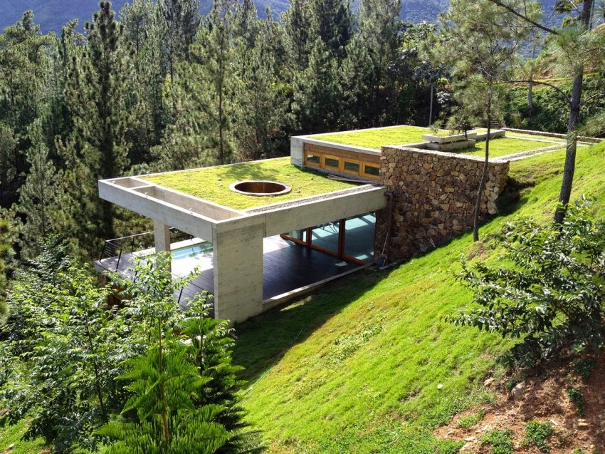 Contemporary House Idea With Grass Roof, RD House