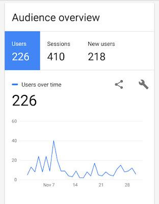 bepinku-com-november-audience-overview