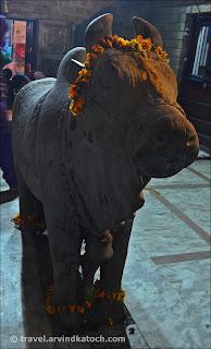 Nandi, Statue, Bhootnath, Temple,
