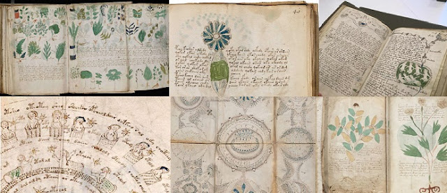Çözülemeyen Gizemli Kitap : Voynich El Yazması