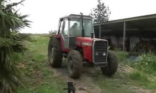 Ông Mujica rất yêu thích công việc làm nông