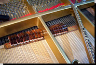 strings in an acoustic piano