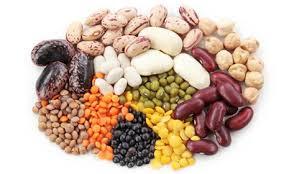 Agri commodity calls, Agri Commodity Tips, Free  Commodity Tips, Free Agri Tips, MCX Tips Services, free agri calls,