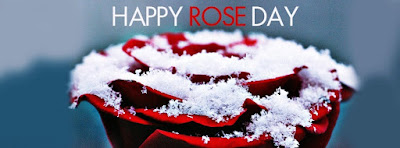 Beautiful Happy Rose Day Cover Pics for Facebook Pictures