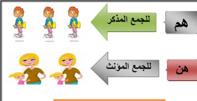 افضل نماذج بوكليت في العربي للصف الثاني الابتدائي