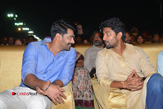 Nenu Local Audio Launch Stills  0159.JPG