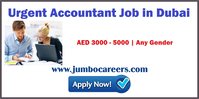 Urgent Accountant Job in Dubai