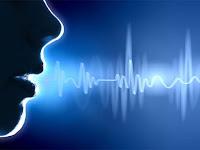 12 Best Speech Recognition Software