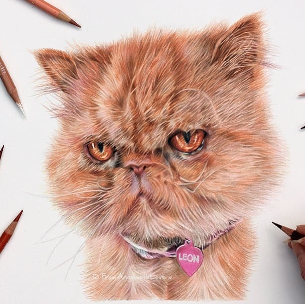 02-Leon-Angie-Cats-Dogs-and-an-Owl-Pencil-Drawings-www-designstack-co