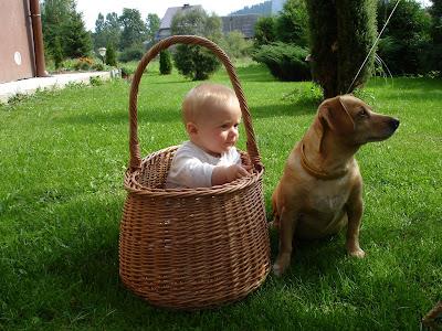 na grzyby z dzieckiem, dziecko w lesie, grzybobrania z dzieckiem