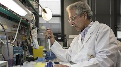 Dejan una herencia de 1,5 millones de euros para investigar el cáncer