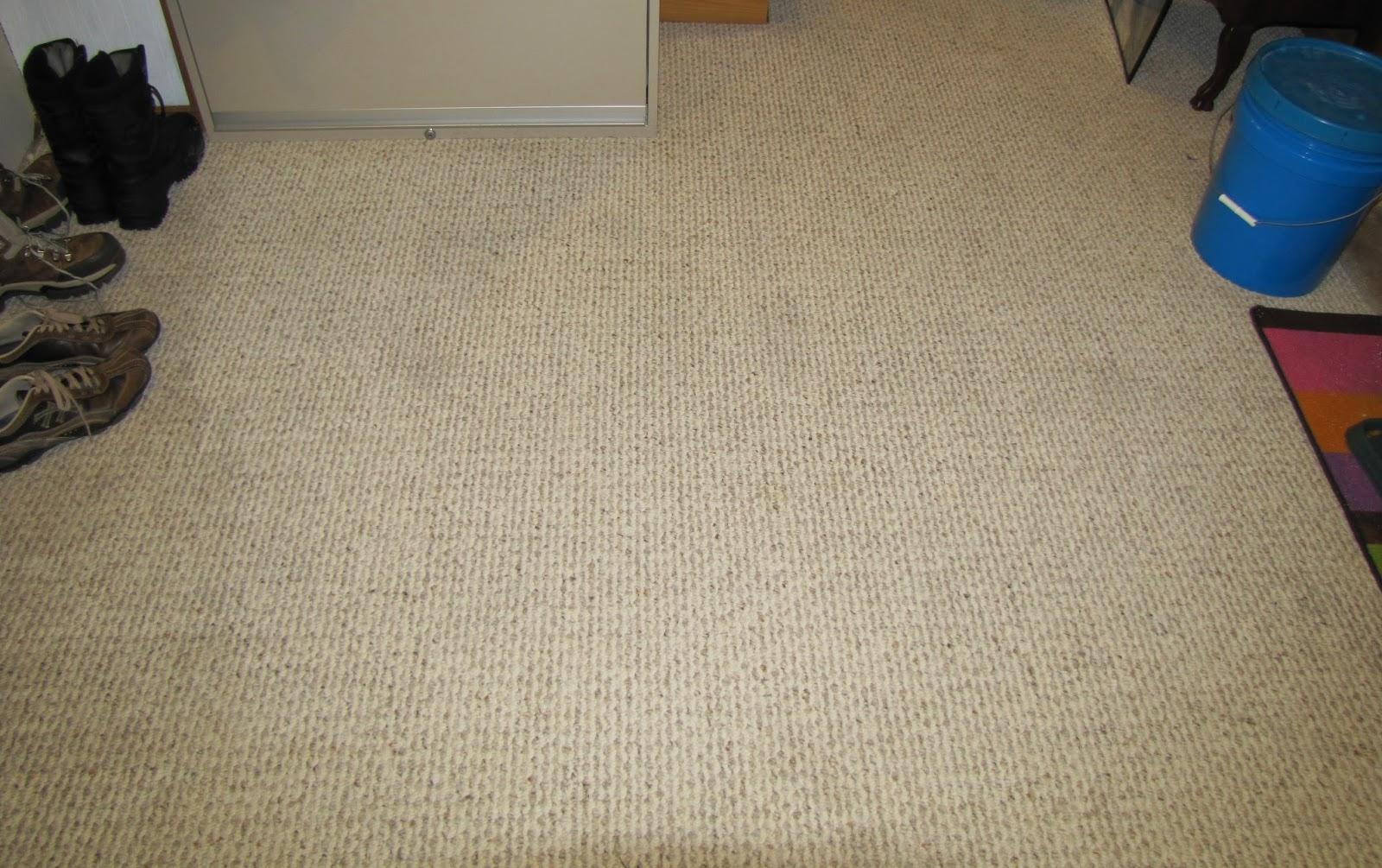 revive carpet