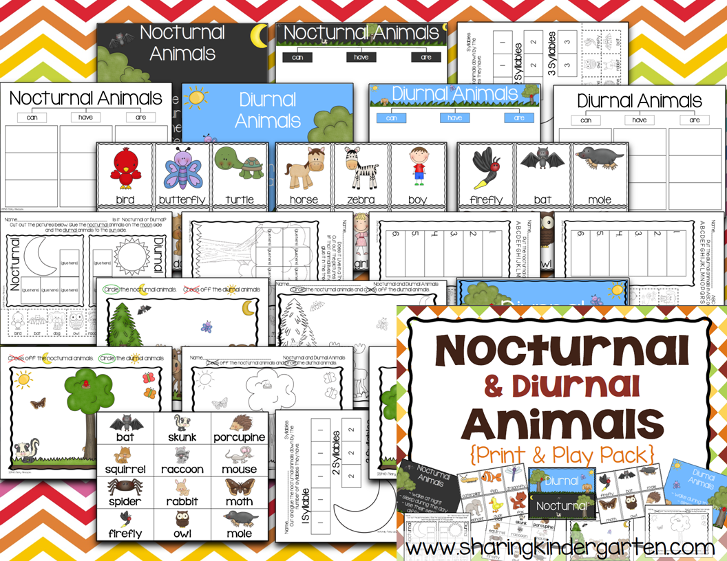Sharing Kindergarten Nocturnal Animals