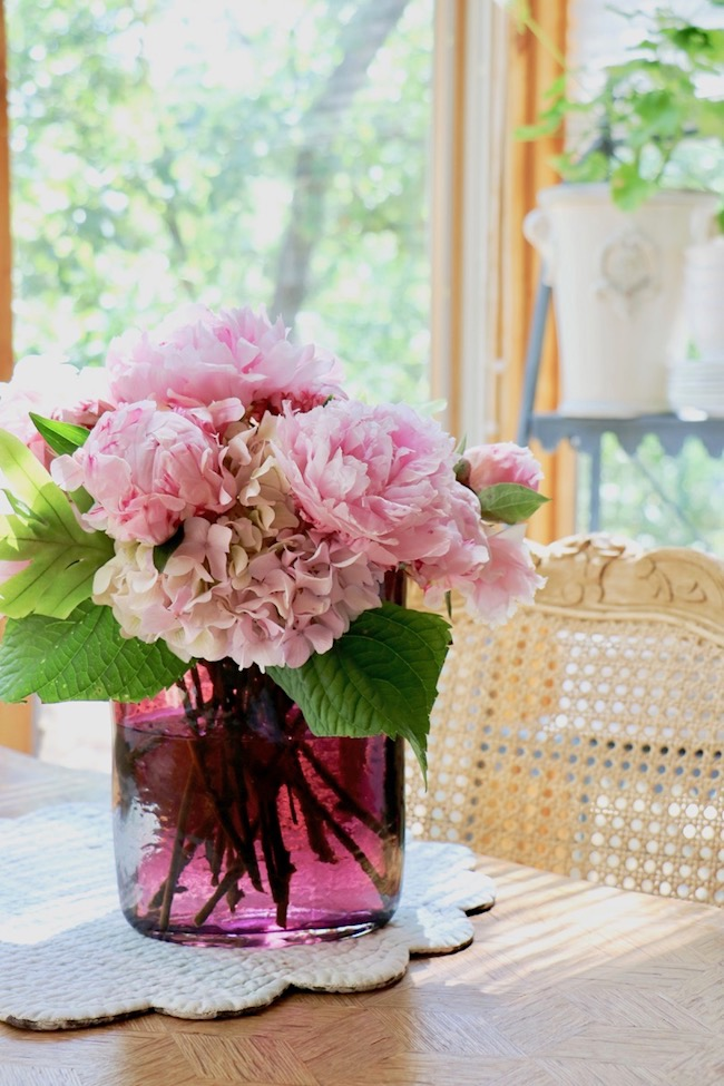 Pink peonies in sunlight in the kitchen