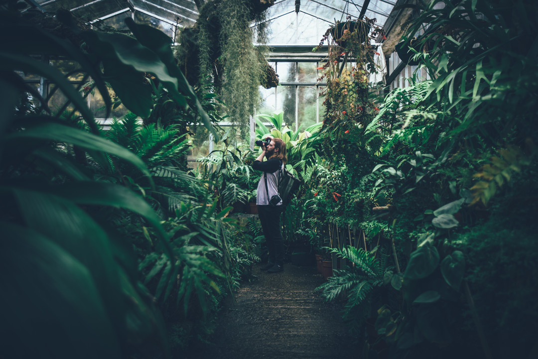 Bucket List: London's Lush Greenhouses