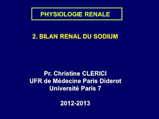 BILAN RENAL DU SODIUM .pdf