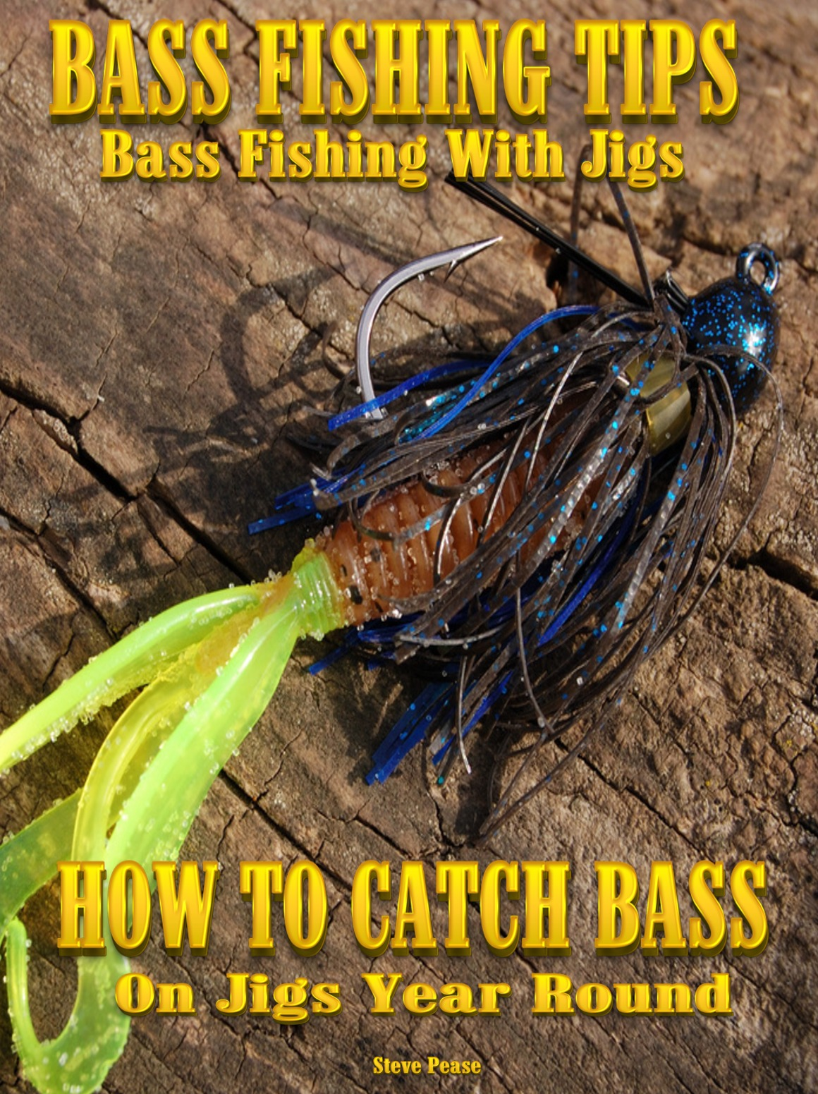 BASS FISHING WITH JIGS