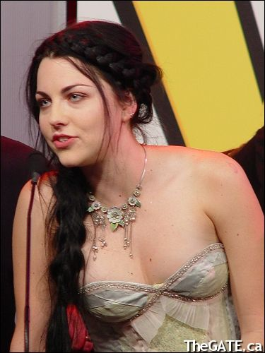 Amy lee in bikini