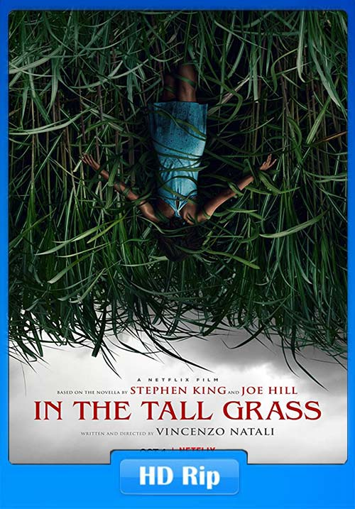 In The Tall Grass 2019 720p WEBRip x264   480p 300MB   100MB HEVC Poster
