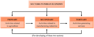 Sectors of Indian Economy: Primary, Secondary & Tertiary