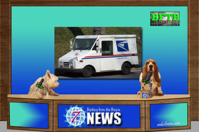 BFTB NETWoof News hosted by two dogs
