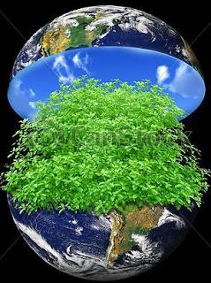 pomul cunostintei binelui si raului