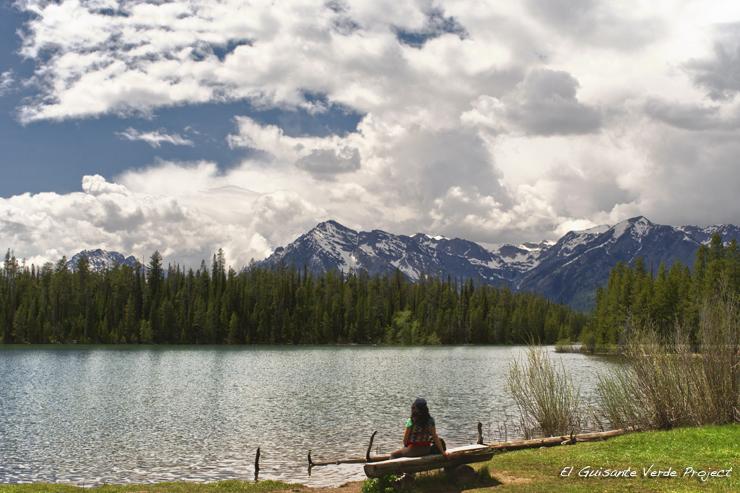 Vista a orillas del Jackson Lake - Gran Teton National Park por el Guisante Verde Project