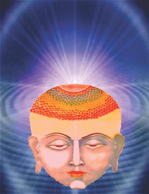 Resultado de imagem para o oitavo chakra