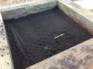 gardening, growing, life on pig row