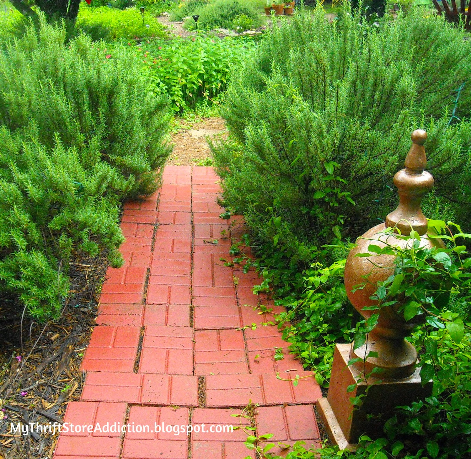 Welcome to Secret Garden: My Creative Space! mythriftstoreaddiction.blogspot.com A fragrant rosemary lined path at the garden's entrance