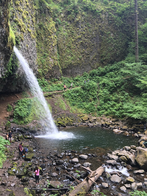 Oneonta Gorge, Oregon | A Hoppy Medium