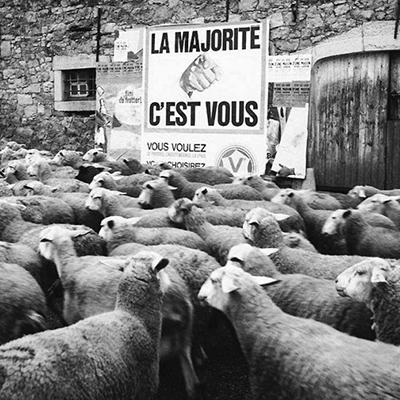 http://www.maxitendance.com/wp-content/uploads/2015/10/rene-maltete-photographie-humour-bon-moment-8.jpg