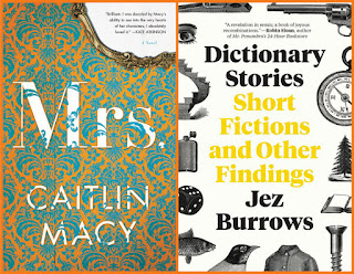 reviews: Mrs. by Caitlin Macy; Dictionary Stories by Jez Burrows