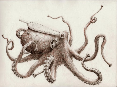 10-Octopus-Bellows-Redmer-Hoekstra-Surreal-Animals-Ink-Drawings-www-designstack-co