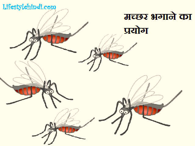 how to kill mosquitoes in home