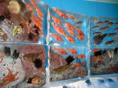http://www.terungkap.net/2012/02/aquarium-beku-yang-menakjubkan-di-cina.html