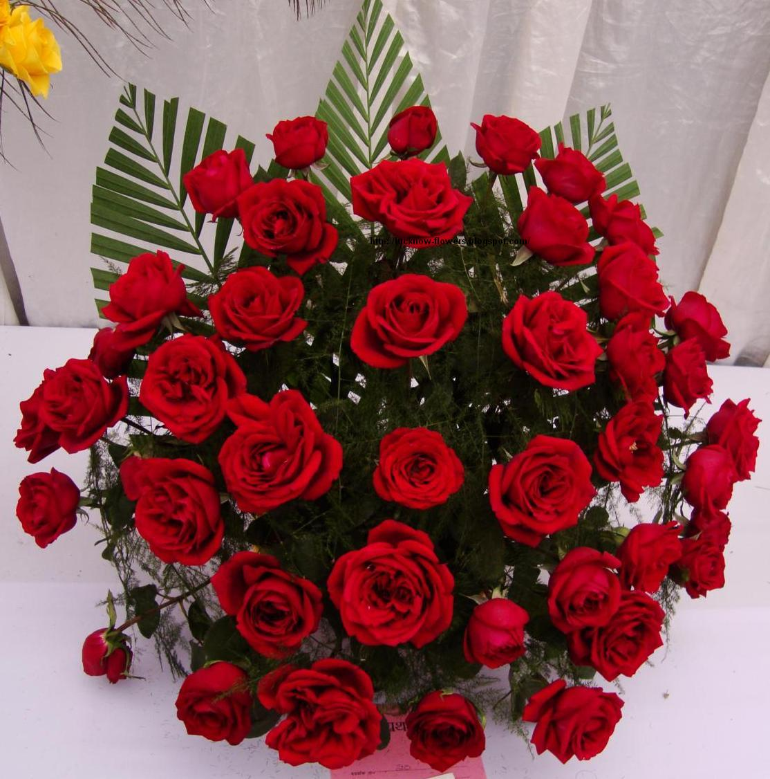 Rose Flower Love: Bouquet Of Roses With Love Quotes. QuotesGram