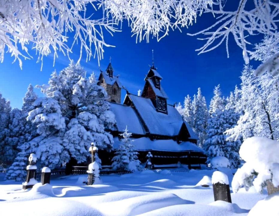 Winter Backgrounds Wallpaper High Definition High Quality