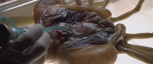 Homages, Ripoffs, and Coincidences: The Facehugger (2)