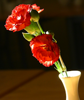 Red Carnation: Custom of Wearing one if Mother Is Living