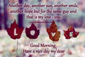 Good Morning Love Quotes: Another day, another sun, another smile, another hope but for the same guy and that is my love you.