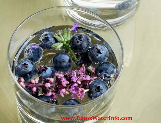 Weight Loss Detox water infused blueberry lavender drink