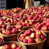 Apple Fest Fair in Korça, promoting the local product