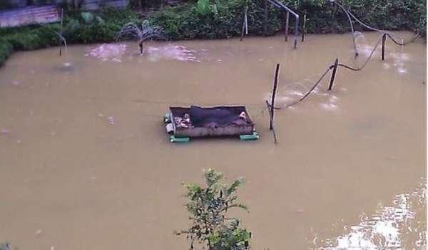 Kolam Ikan Bangkai Babi Diarahkan Tutup