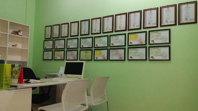 lisensi Badan Nasional Sertifikasi Profesi (BNSP)